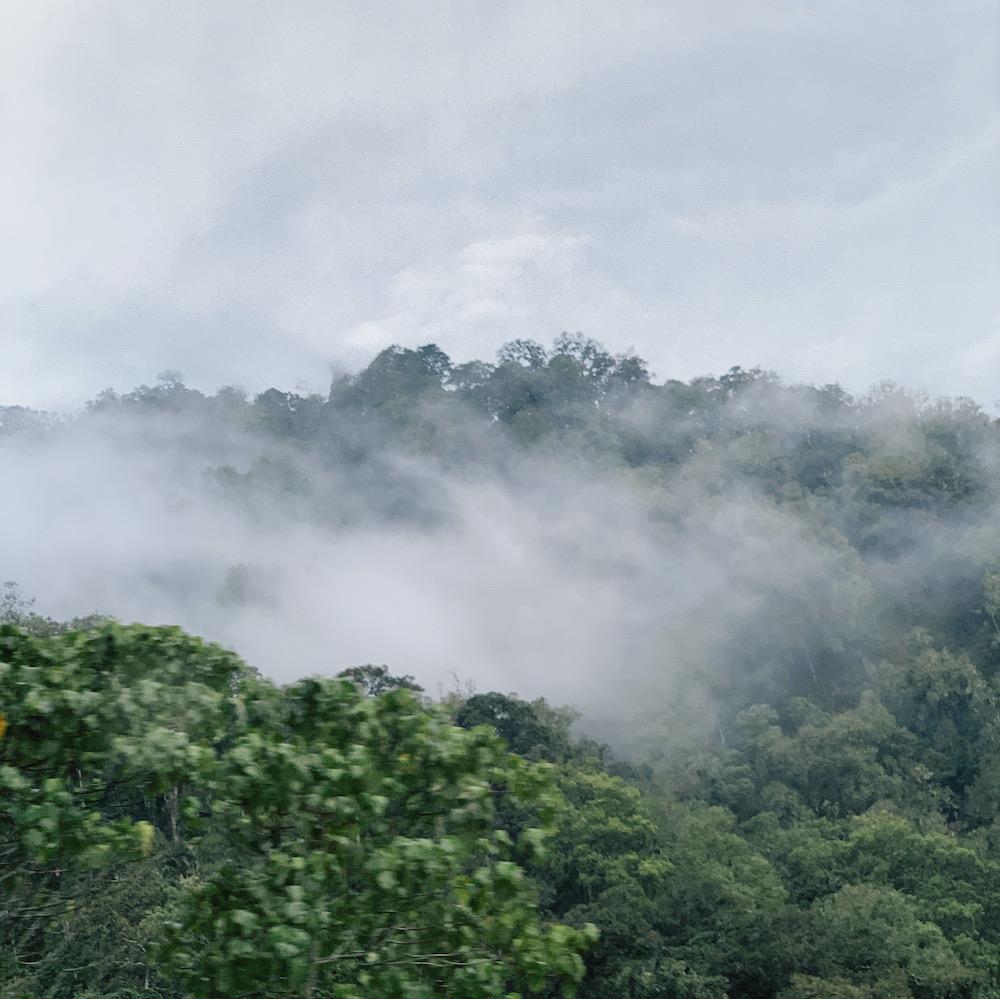 Kabut di Geopark Gunung Rinjani